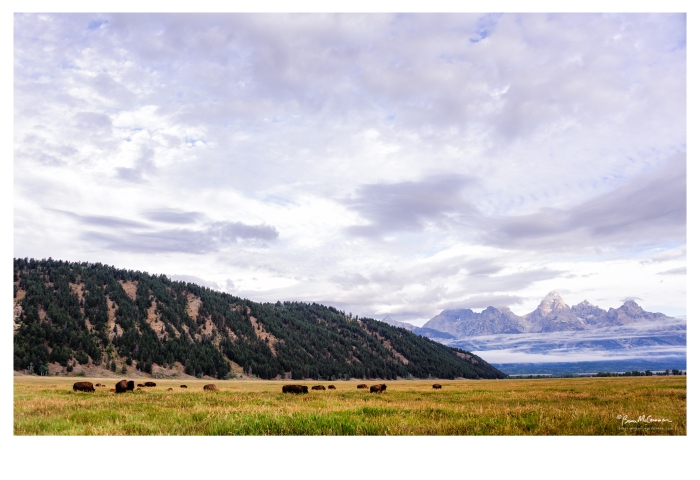 Grand Teton National Park, Mormon Row